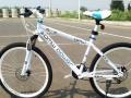 厂家批发全新单车山地车折叠车全北京免费送货上门货到付款现场试骑送