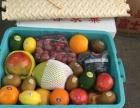 【鑫富水果】水果蔬菜米面粮油批发配送 证照发票齐全