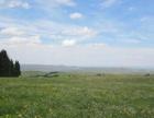 6月20邀您南山穿行幽幽谷花海休闲摄影一日游