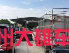 广州白云西槎路汽车年审 上牌 过户