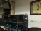 峡山与高埔客户购买底滤龙鱼缸已自载自装完成