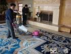 南京地毯清洗公司,写字楼 酒店地毯清洗,上门清洁地毯消毒除菌
