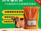 牛吃什么饲料长得快缩短肉牛出栏时间的催肥饲料