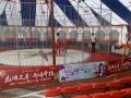 大型皇家马戏团演出/环球飞车表演/生死轮表演/贵港