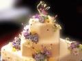 生日蛋糕店咖啡调酒奶茶加盟投资加盟