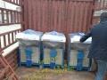 湖北省滑石粉包装机水泥包装机氧化钙包装机价格优惠