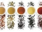青岛教老外中文中国茶文化