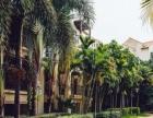 三亚亚龙湾双阳台园景双卧套房