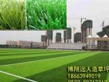 东城区足球场人造草皮厂家
