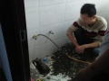 金盏附近改造卫生间水管