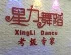 星力舞蹈考级培训专家