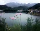 千岛湖旅游包吃住