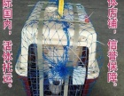宏鹏宠物托运随机托运发至全国各地代办检疫证活体托运