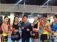 友荣散打,搏击,女子防身术,少林武术,泰拳培训