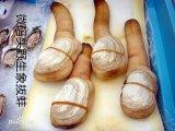 阿拉斯加野生象拔蚌 鲜活海产品海鲜 约300克/只
