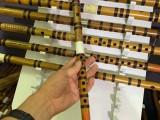 鄭州哪里有賣笛子的啊