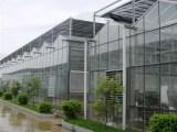 薄膜连栋温室建造——山东哪家温室大棚厂好