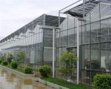 称心的温室大棚推荐|玻璃连栋温室建设