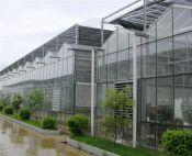 温室大棚价格行情-薄膜连栋温室建造