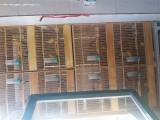 出售今年的各种小玉鸟87只