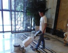 擦玻璃家庭保洁,开荒保洁,地毯清洗