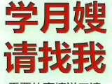 北京朝阳区惠新西街育婴师