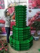 为您推荐优质立体绿化花盆 -立体绿化植物