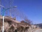 黑龙江太阳能路灯厂家