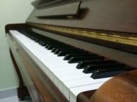 罗湖国贸钢琴培训成人如何正确练习钢琴的指法手法