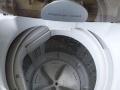 日本三洋5.5kg全自动洗衣机