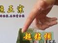 新乡美容芦荟专卖