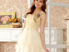 加大码显瘦款礼服晚装 连衣裙2014新款新娘结婚婚纱伴娘服 /9201