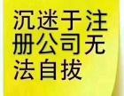杨浦注册提供地址 变更法人股东 经营范围