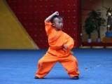 河南少林寺文武学校文化课主要学习是和普通学校学的一样