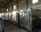 公司常年出售回收干燥机 1平方2平方3平方5平方冷冻干燥机