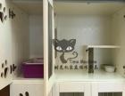 成都(高新区)时光机家庭猫咪寄养