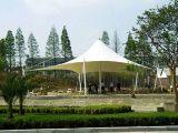 收费站雨棚,骏翔膜结构专业提供膜结构制造