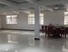 义序物流旁 251平 租20元 3楼精装修适合办公