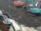 上海浦东新区南码头长 短臂挖掘机出租