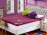 罗莱雅 珊瑚绒立体床垫(多针绗绣)加厚保