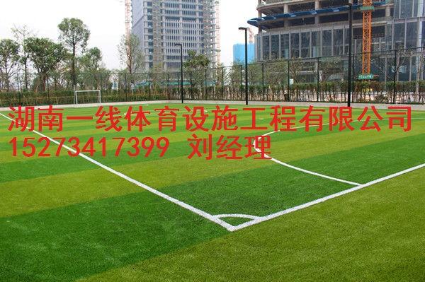 娄底双峰县人造草皮价格,足球场人造草铺装湖南一线体育设施工程