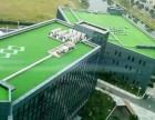 北京假草坪人造草坪批发