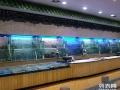 广州海鲜市场海鲜养殖技术鱼池,广州制冷玻璃鱼池制冷设备制冷机