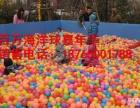 百万海洋球厂家直销,孩子喜欢的百万海洋球