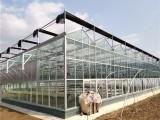 陽光板溫室造價 陽光板溫室大棚設備