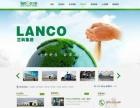 E品互联网络公司,网页设计,网站建设,微信开发