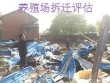 天津搅拌站损失评估,绿化树赔偿评估, 场赔偿评估