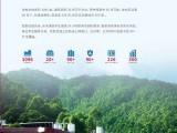 广州全日制大专大学,中医康复技术专业,面向全社会招生