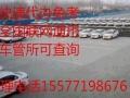 滨州考照合格率高小车驾驶培训