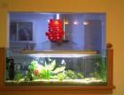 专业订做各种鱼缸 鱼缸长期清洗护理 维修
